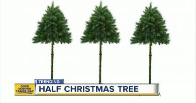 """Can The """"Half"""" Christmas Trees Solve the Problem of Pets and Toddlers?"""