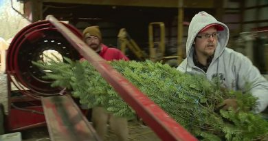 Charity Delivers 16,000 Christmas Trees To Military Families