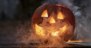 """It's Officially """"Fall"""" . . . Time For A Few Pumpkin Fun Facts"""